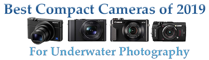 Best underwater camera for Underwater Photography and Videography