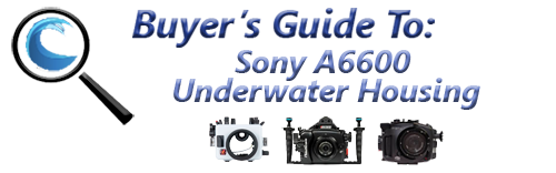 Buyers Guide for Sony a6600 Underwater Housing