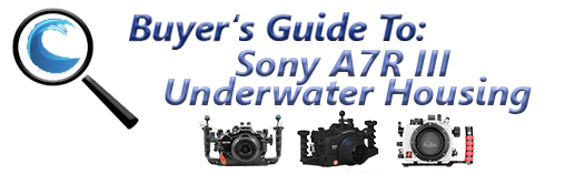Sony A7R III Underwater Housing Guide - Bluewater Photo