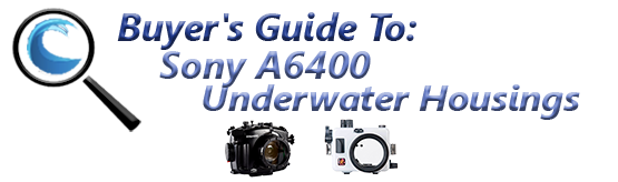 Buyers Guide for Sony a6400 Underwater Housing