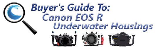 Buyers Guide for Canon EOS R Underwater Housing