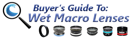 Macro wet lens buyer's guide - wet diopters