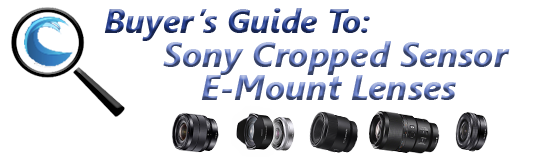 Best Sony E-Mount Lenses for Underwater