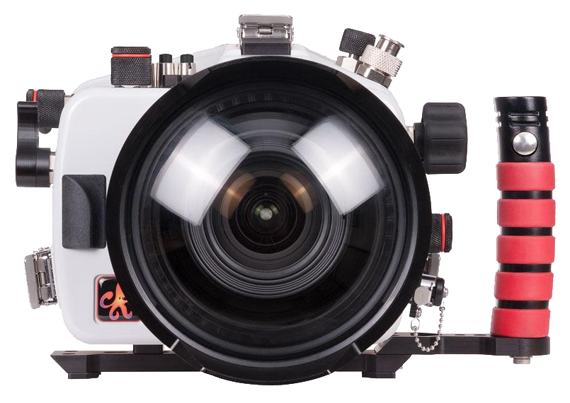 Canon 5D Mark IV Housing Guide - Bluewater Photo
