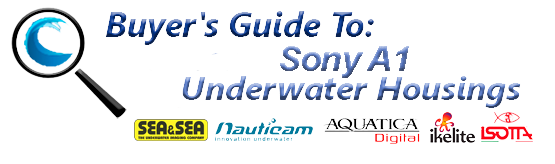 Buyers Guide for Sony A1 Underwater Housing