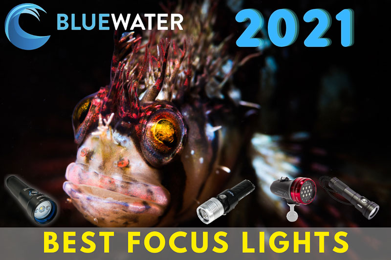 Focus Lights for underwater photography - Buyer's Guide