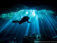 Diving the Mexico Cenotes