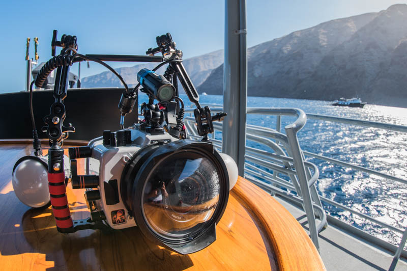 Sony a7r iv underwater review