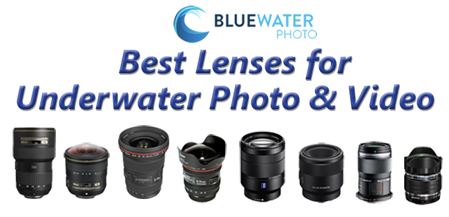 Best lens for underwater
