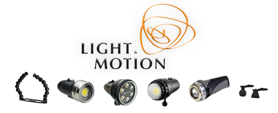 light & motion sale