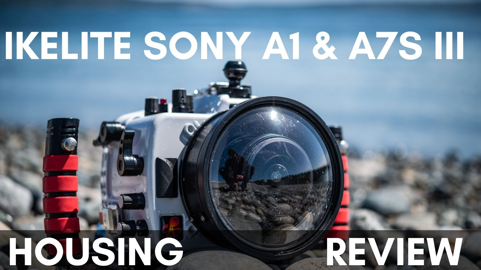 Ikelite Sony A1 & A7S III Underwater Housing Review