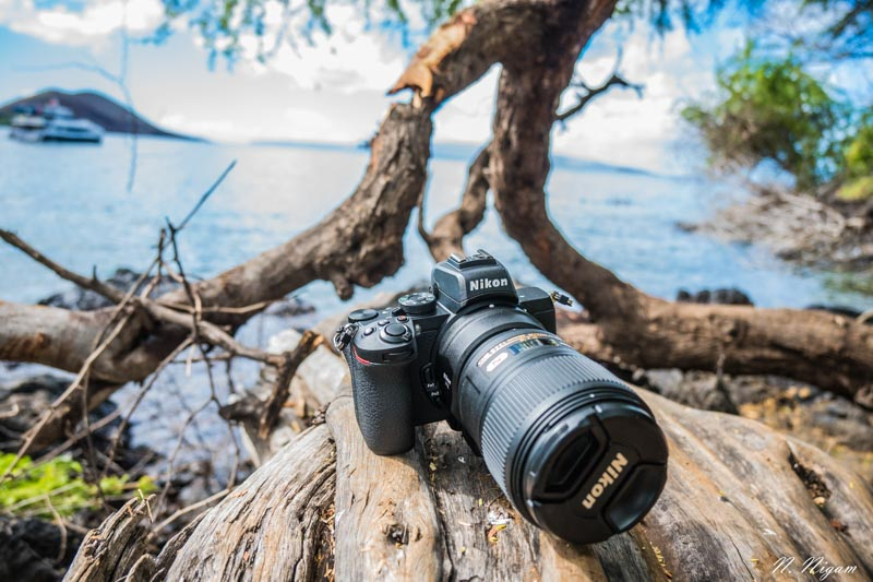 Nikon Z50 underwater review