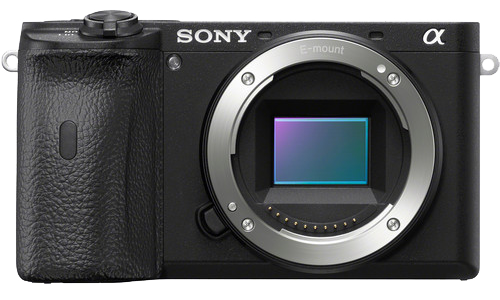 Sony a6600 Underwater Review