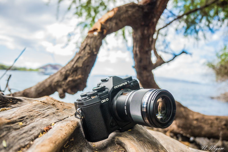 Olympus OM-D E-M5 Mark III Underwater Review