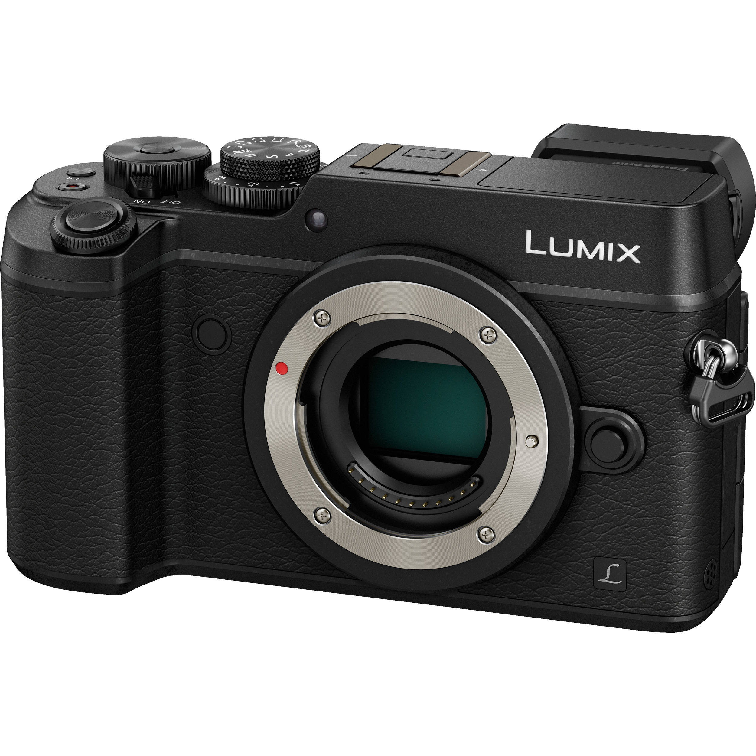 Panasonic GX8 Review for Underwater Photography