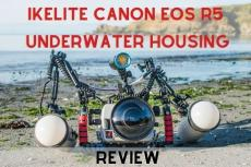 Ikelite Canon EOS R5 Underwater Housing Review
