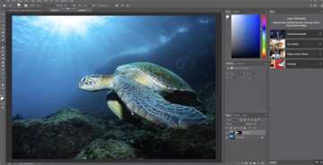 Backscatter Removal in Photoshop