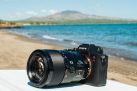Sony A7R IV Review - Underwater