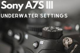Sony A7S III Underwater Settings