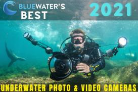 Best Underwater Photo & Video Cameras of 2021