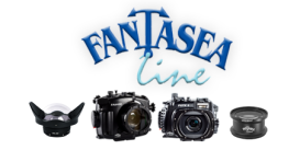 Fantasea Summer Sale Bundles