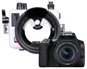 Ikelite Canon SL3 Camera and Housing Package