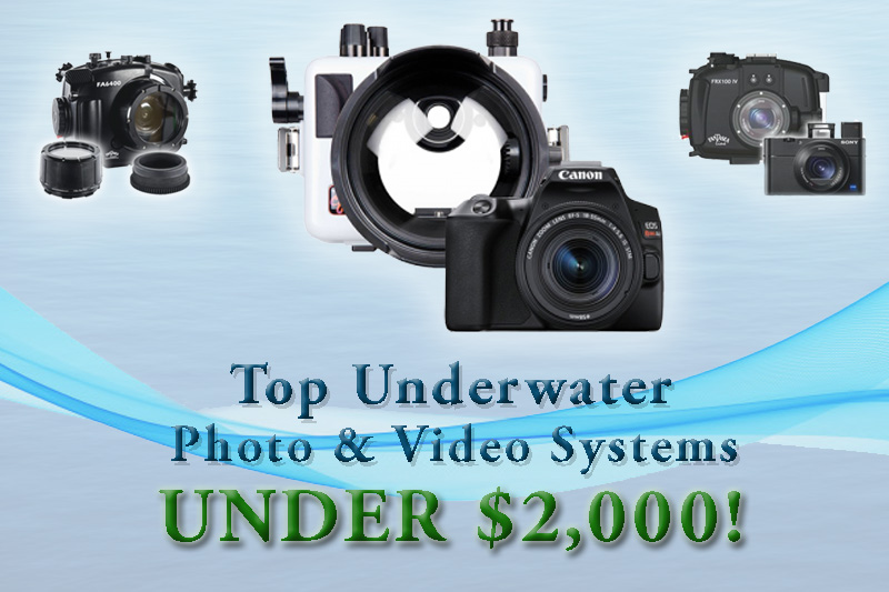 Top Underwater Photo & Video Systems for Under $2000